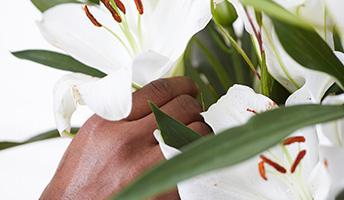 decoration-florale-bueau-louisiane